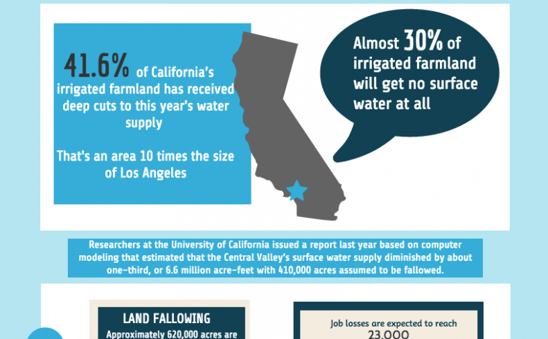 Over 41 percent of California's irrigated farmland loses nearly entire surface water supply