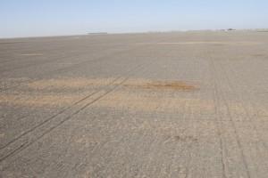 Federal Drought Legislation