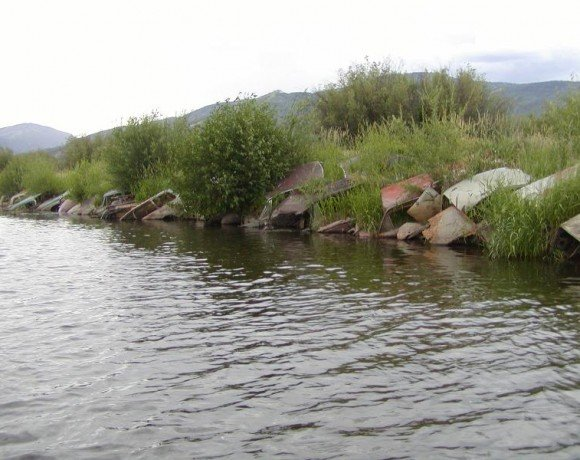 Response to the State Water Control Board's Water Quality Control Plan